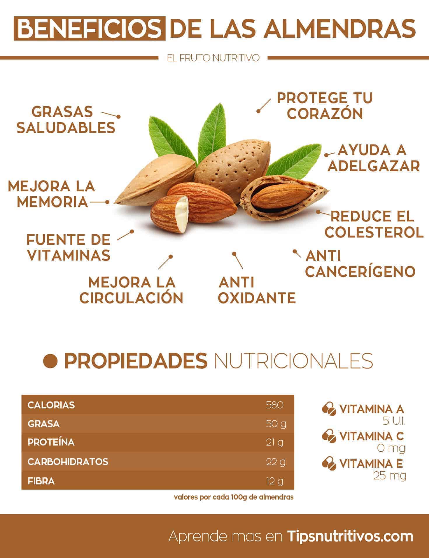 Propiedades y beneficios de las almendras ¿La mejor comida?