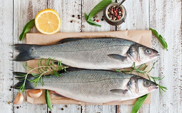 dieta atkins proteina