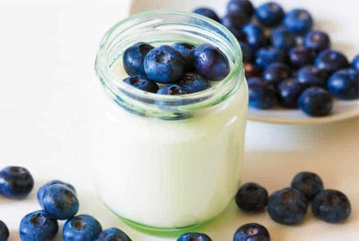 yogurt de arandanos