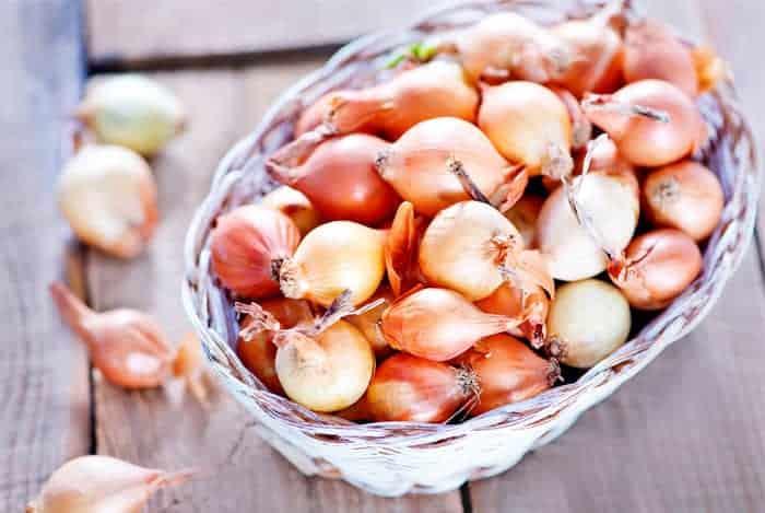 Cebollitas-marrones