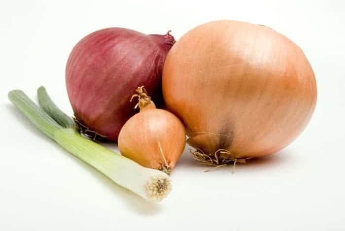 Nutrientes-en-la-cebolla